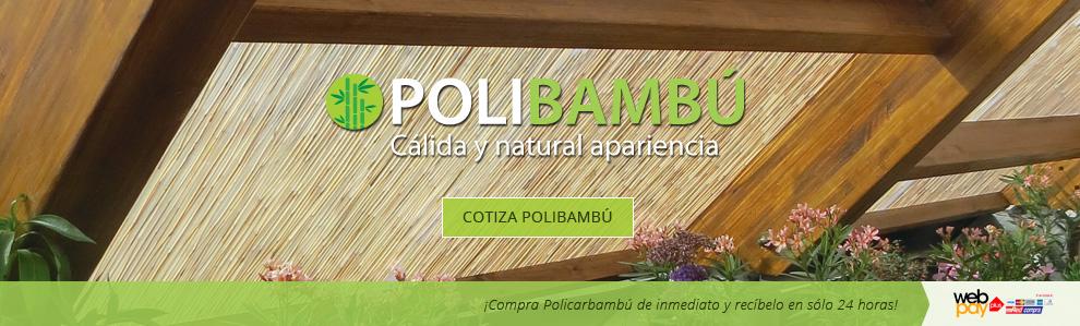 Polibambú