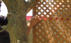 Instalación de Treillage de PVC – Enrejados para jardín